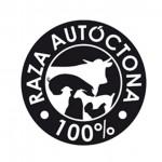 Raza Churra: raza autóctona 100% de Castilla y León