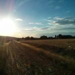 El otoño en nuestra ganadería